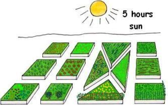 VegetableGardenLayout